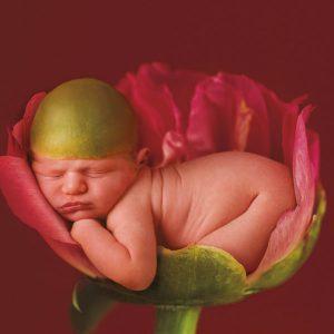 Ann Geddes baby photo