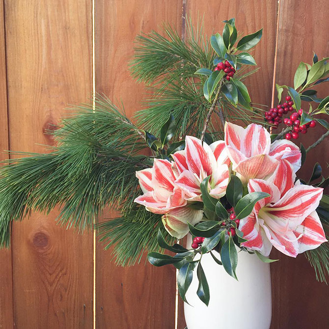 Hello Flowers Holiday Theme Arrangement