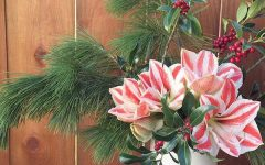 Hello Flowers Holiday Theme Arrangement