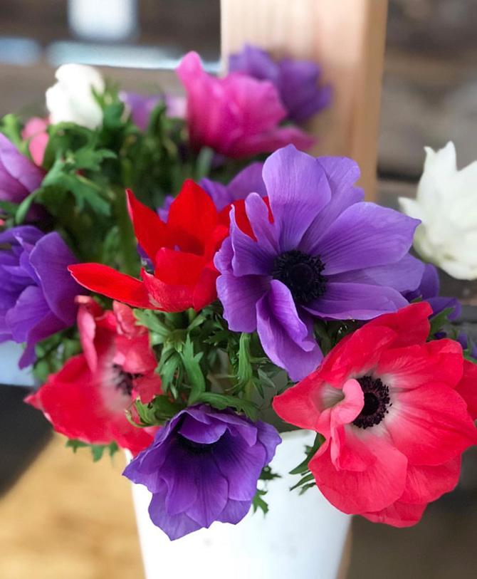 Popup Florist Anemone Arrangement