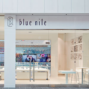 Blue Nile webroom