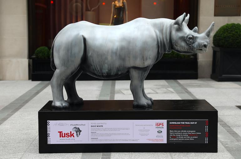 Forevermark rhino Tusk