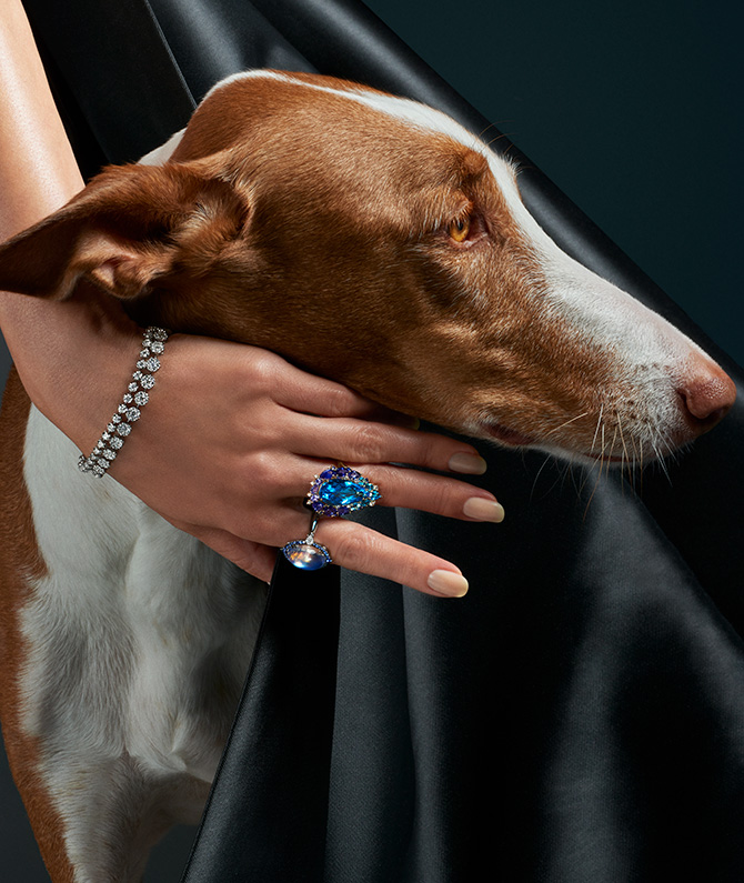 woman in blue jewels and dog
