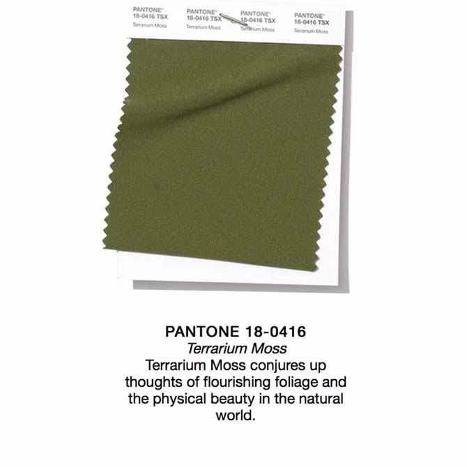 Pantone SS19 Terrarium Moss