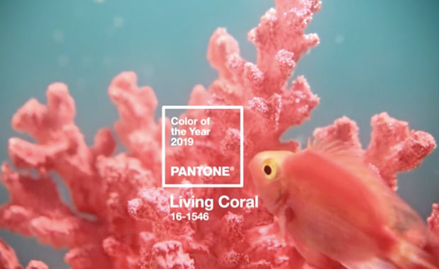 Pantone announces its 'life-affirming' Colour of the Year 2019