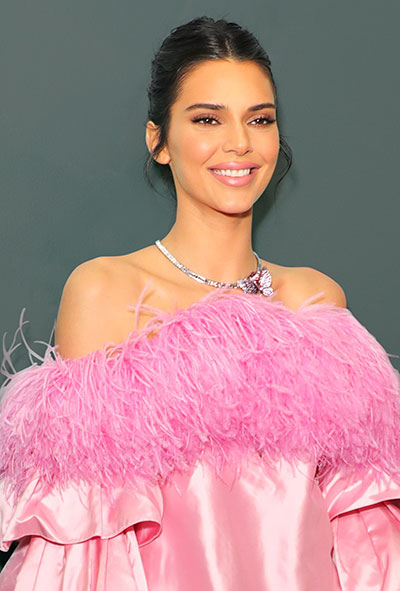 kendall jenner in pink feather dress
