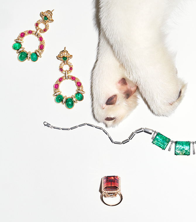 Dog paws with ruby emerald earrings and emerald necklace