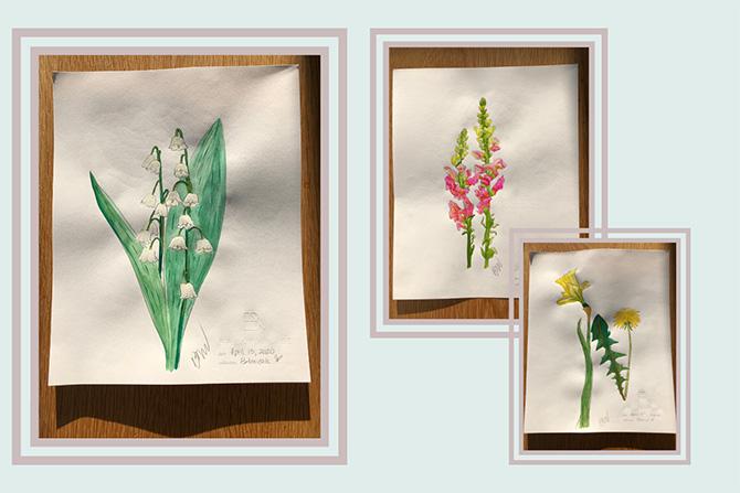 Brent Neale floral artworks