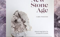 The New Stone age cover