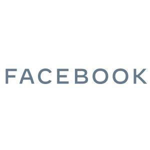 Facebook Wordmark Gray