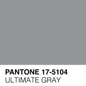 Pantone Ultimate Gray