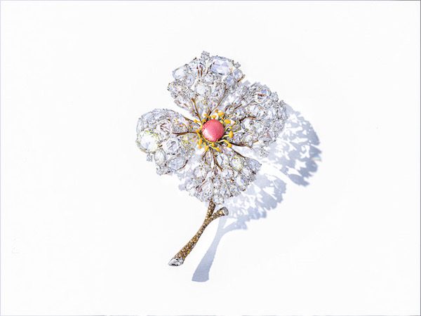 Cindy Chao Diphylleia Brooch