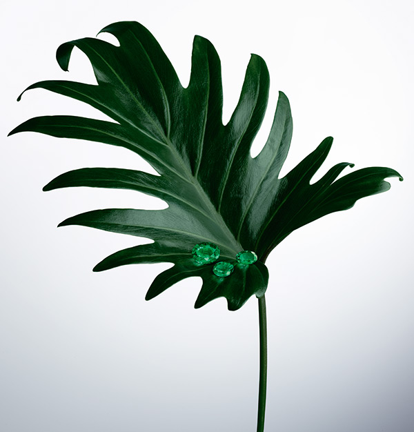 Emeralds on Leaf