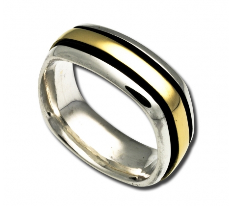 Zina Stratus band in silver with 18k gold