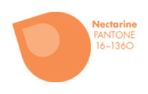 Pieces of Pantone: Nectarine