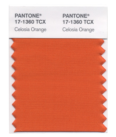 Pantone's Celosia Orange