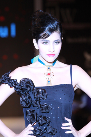 IIJW 2011 and jeweller Rosily Paul Vadakkei